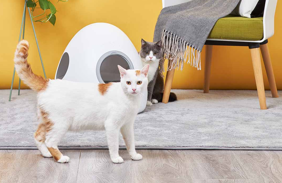 The latest from Xiaomi is a small pet house with ventilation and temperature and sleep control