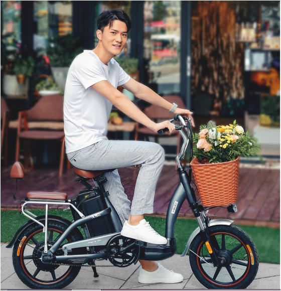 Himo C16 Electric MOPED Bicycle