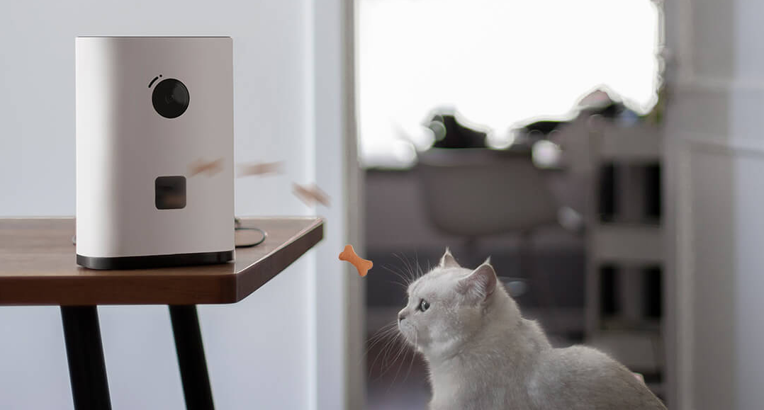 Xiaomi launches a new pet surveillance camera equipped with an award dispenser for sale
